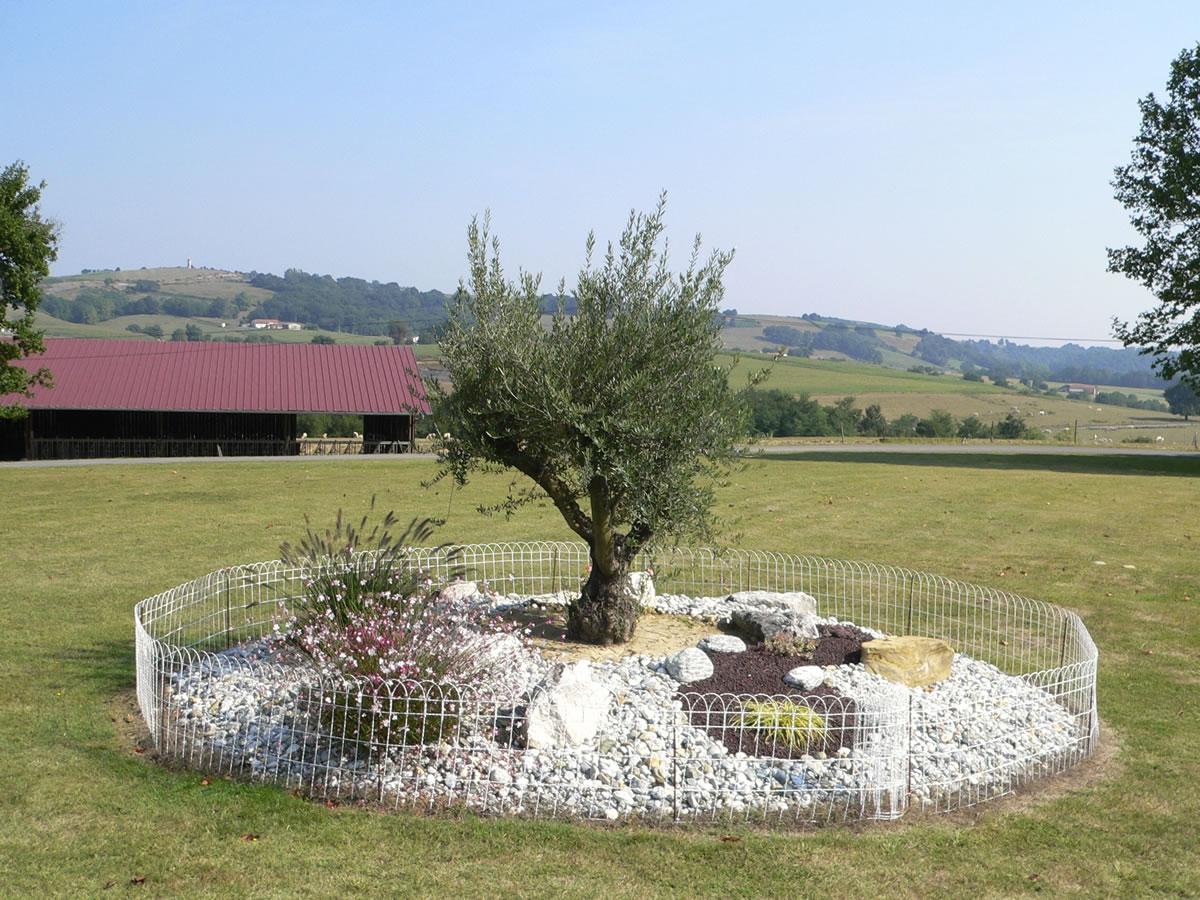 P1010788 3 G Tes Louer Au Pays Basque G Tes 3 Toiles